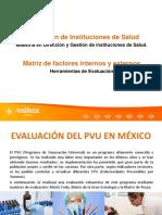 Matriz de factores internos y externos.