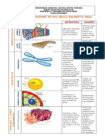 ORGANELOS CELULALRES 2.pdf