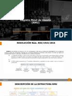 REGISTRO-ESTRUCTURA RMU 290120