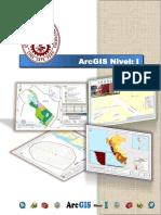 Manual _ ArcGIS Nivel I