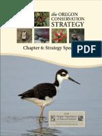 Strategy Species