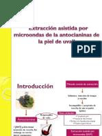 Optimización de La Extracción Asistida Por Microondas