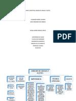 Mapa Conceptual Grasas y Aceites