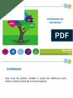 ESTANDARES DE SEGURIDAD SERVIEN.pdf