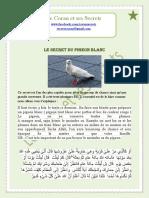 Secret de pigeon