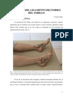 3 LESIONES LLI TOBILLO V FERRER (1)