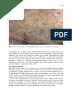 canine and feline skin cytology-19