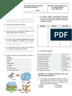 Evaluacion ecosistemas - Ciencias Naturales 8.docx