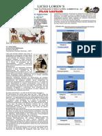 10°MAQUILLAJE-DE-LOS-OJOS-ANTIGUO-EGIPTO.pdf