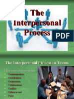 The Interpersonal Process_1
