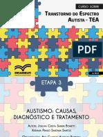 Autismo causas, diagnóstico e tratamento