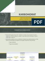 karbohidratfix-180603141228.pdf