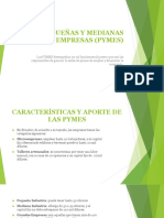 LAS PEQUEÑAS Y MEDIANAS EMPRESAS (PYMES)