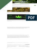 Conocer la diferencia entre el aceite de cáñamo y el aceite de CBD - Hemp Oil.pdf