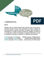 rom_infobasica3_vist_rom.pdf