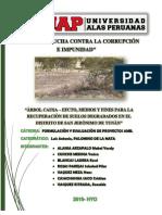 ARBOL DE PROBLEMAS-FINAL corregido