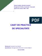 Caiet de Practica -Costache Liviu-Gabriel -MAC