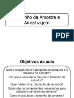 tamanho da amostra e amostragem - aula mestrado 2013-1.pdf