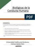 1 DELIMITACIÓN CONCEPTUAL DE LA PSICOLOGÍA FISIOLÓGICA 08-junio.pptx