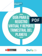 GUIA SOBRE PLANEFA 2020-REVISAR