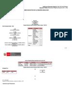 resumen_ejecutivo_region ayacucho 15.06.18 - MODELO