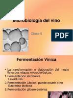 clase_7microbiologia_del_viino_2011-O.pdf