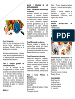 brochure higiene de alimentos estela