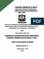 GASPAR.pdf