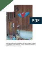 Décès d une enfant martyrisée par des adeptes de Jakob Lorber. Le procès au 03 12 2010