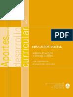 Aportes curriculares inicial- av. de mayo y av. eva peron