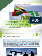 PROGRAMA DE ESTUDIO PROPIEDADES (1)
