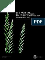 Gamezetal.2018.GuiailustradadeplantasarvensesCAM