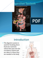 The-Digestive-System-final-1.ppt