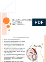 curs 3 obstetrica