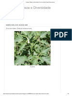 Erva-do-diabo (Datura stramonium).pdf