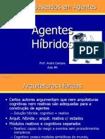 Agentes Hibridos