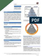 CP 100 PROGRAMA ESH