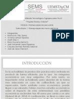 COLIBACILOSIS-Terminado.pptx