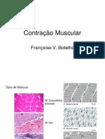 contração muscular.ppt