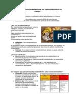 ANALISIS CARBOHIDRAROS.docx
