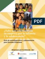 Guía de Autodiagnóstico y Planeamiento en RSE e Infancia para Grandes Empresas
