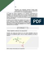 Campo_magnetico.docx