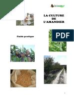 Guide-CultureAmande-2015