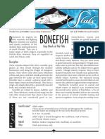 Sea Stats Bonefish