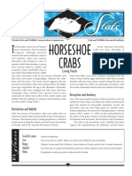 Sea Stats - Horseshoe Crabs