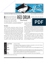 Sea Stats - Red Drum