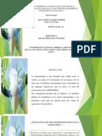 Evaluacion final POA_Anyi Lorena Marin_100101_36