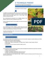 culturepimentmada.pdf
