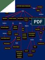 mapa conceptual LEY ESTATUTARIA N° 1621 DEL 17 DE ABRIL DEL 2013.pdf