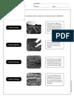 Tipos de suelo.pdf